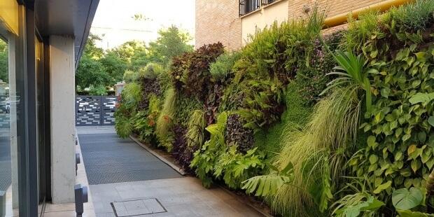 Los jardines verticales serán tendencia en 2020
