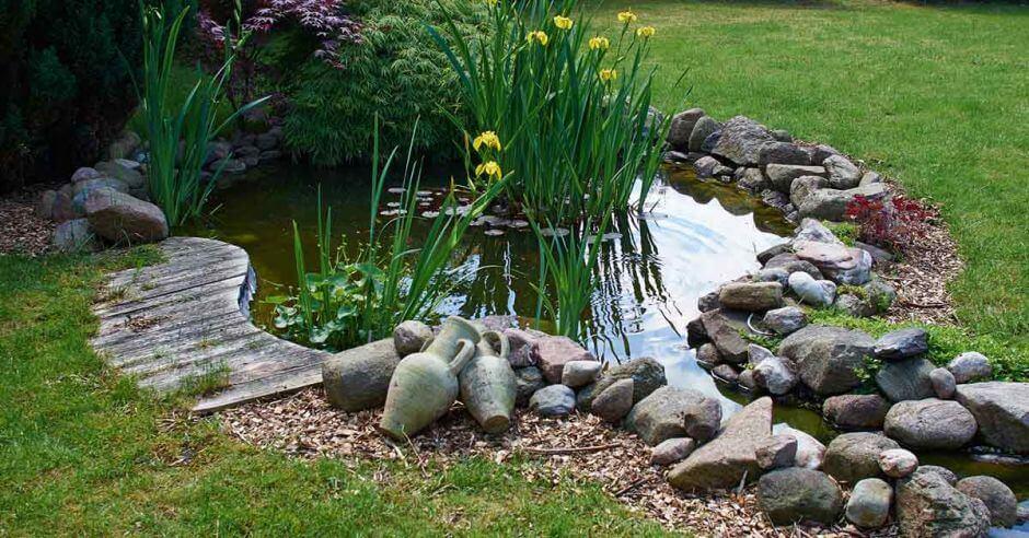las rocas son un buen elemento de decoración en los jardines acuáticos