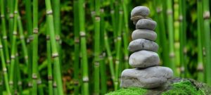 tendencias en bambú